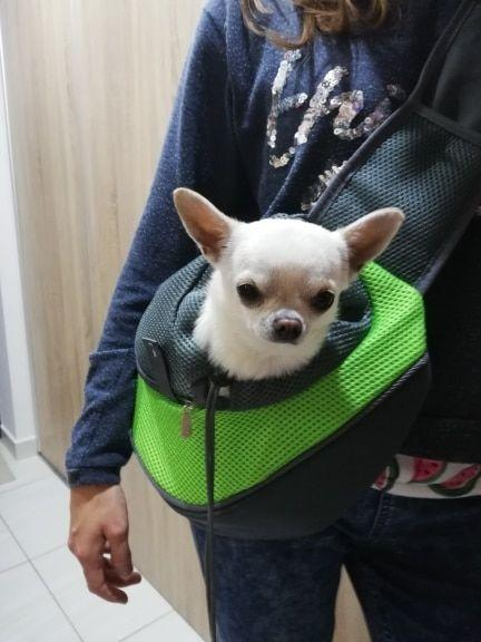 Pet Carrier Shoulder Bag