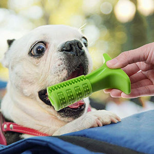 Chew n' Clean Natural Dog Toothbrush