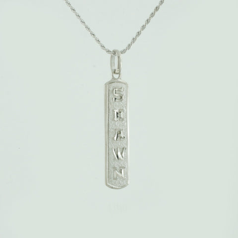 Image of Egyptian Necklace, Egyptian Cartouche,  Initial Necklace, Personalized in English & Hieroglyphs, Slim