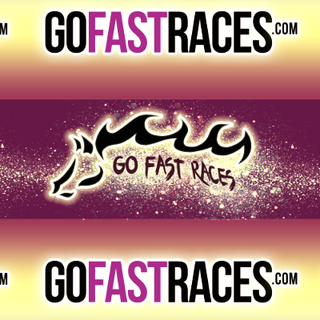 Go Fast Races