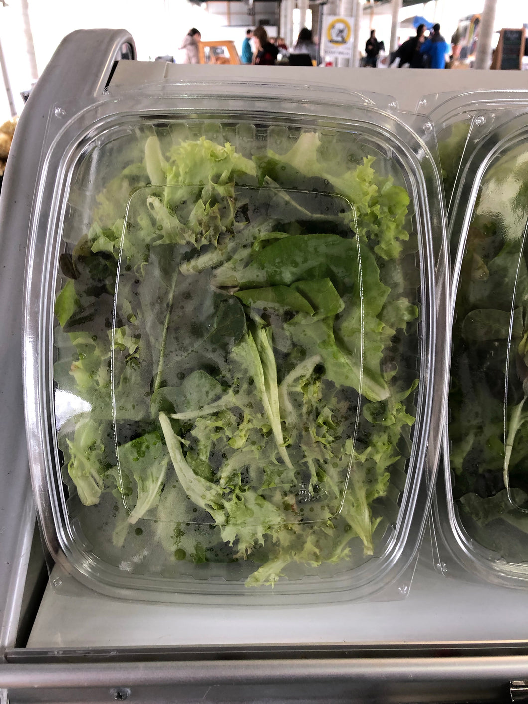 Mixed Salad Greens