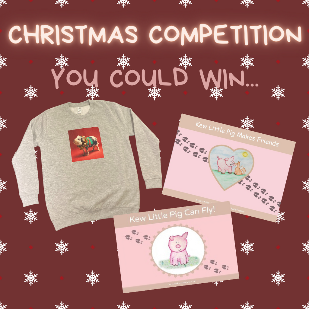 Christmas Competition!