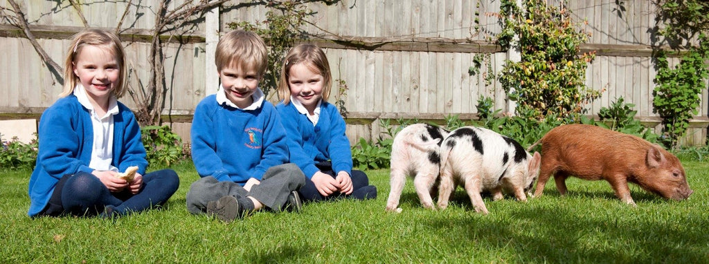 Educational Visits from Kew Little Pigs