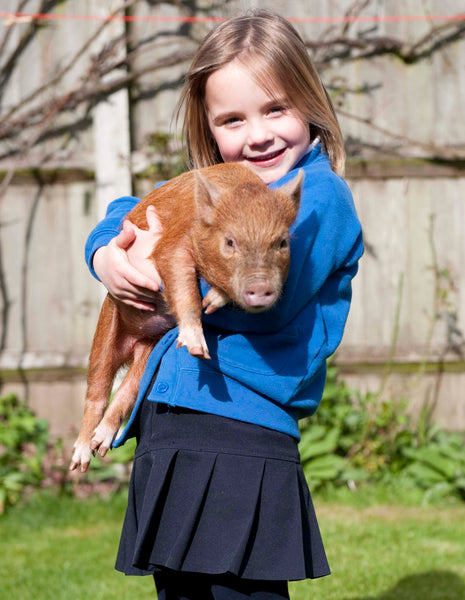 School visit's to Kew Little Pigs - Key stage 1 & 2