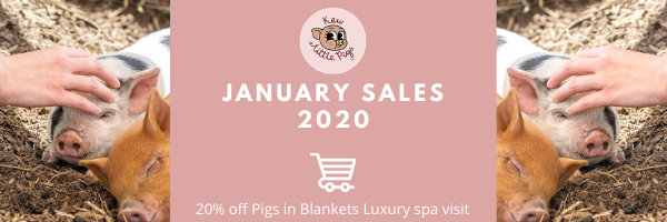 Promotional offers from Kew Little Pig.  January  - June 2020