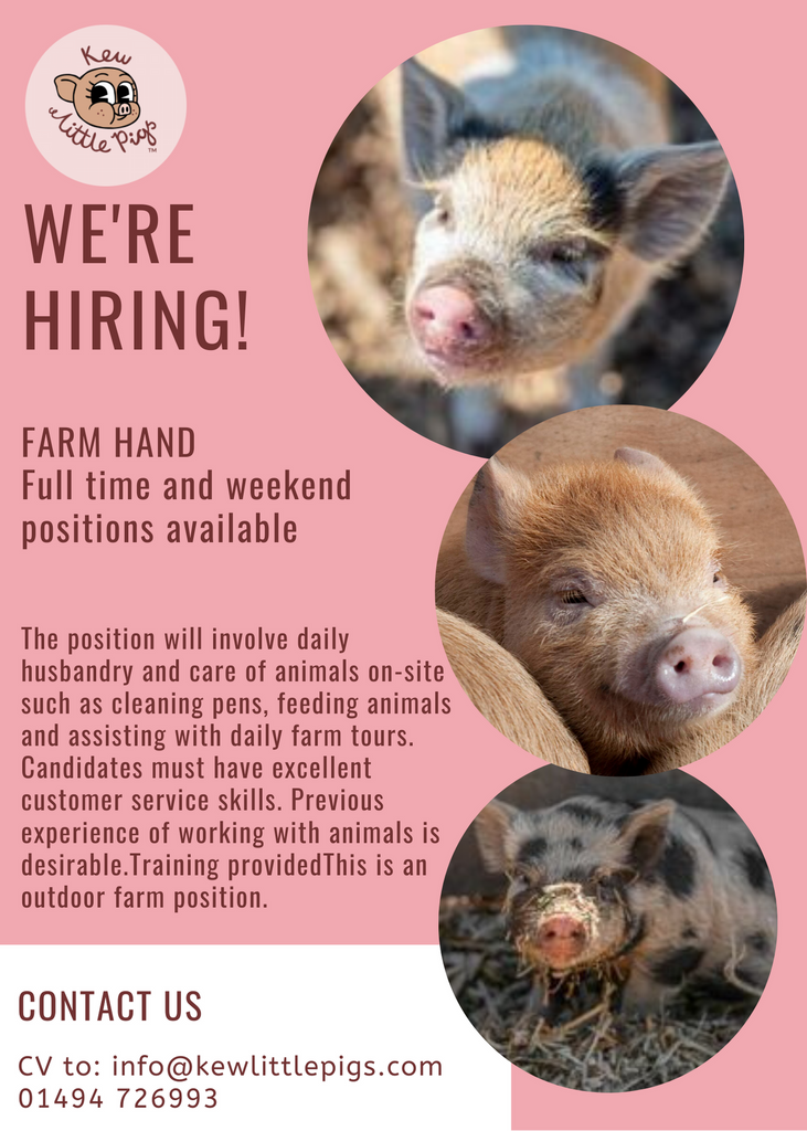 RECRUITMENT: FARM HANDS