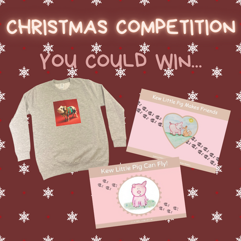 Pig Christmas Competition Prizes