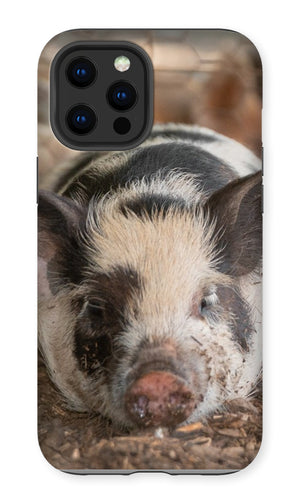 Lazy Pig Premium Phone Case
