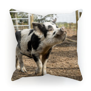 Young Gizmo Cushion