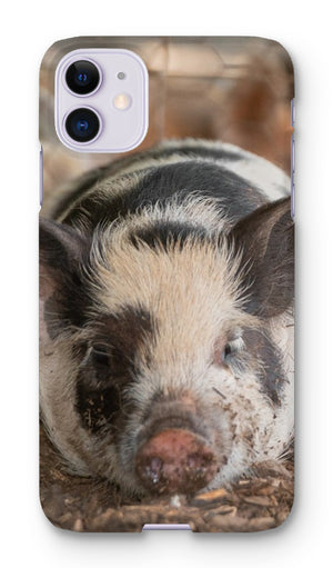 Lazy Pig Phone Case