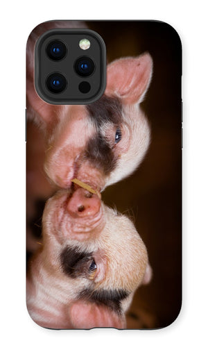 Kissing Piglets Premium Phone Case