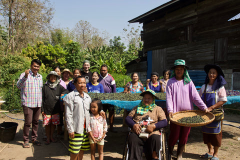 Beautiful communities farming our butterfly pea flowers.