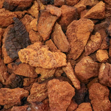Load image into Gallery viewer, WILD CRAFTED CHAGA MUSHROOM | Chunks