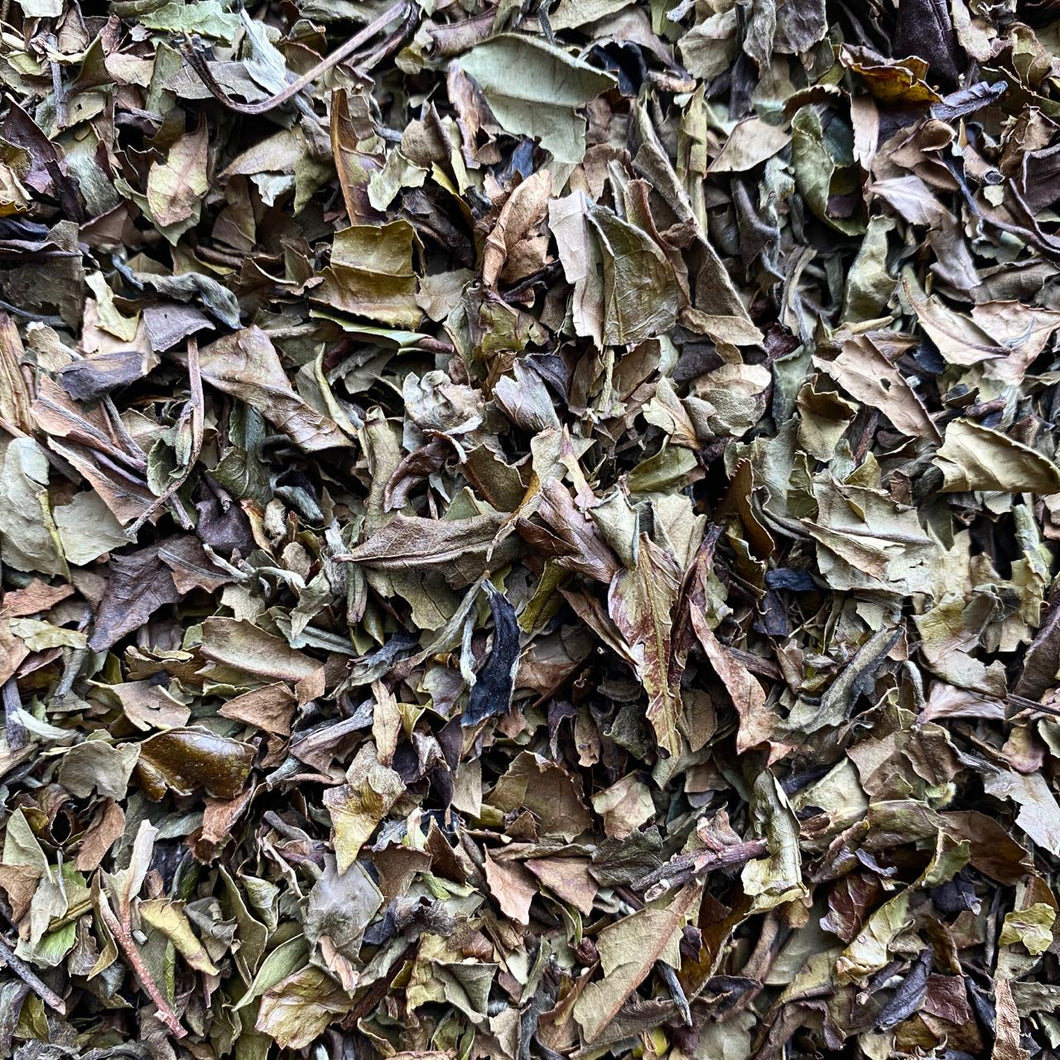 White Tea #9 - Huang Shan