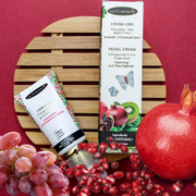 Kit home SPA wellness facial pomegranate & kiwi