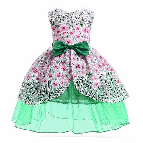 Garden Bloom Princess Party Dress 2-10 year