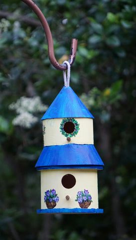 The Bird Condo Acrylic Birdhouse Paint & Sip Kit