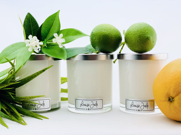 'Fresh Citrus' Medium Candle Collection