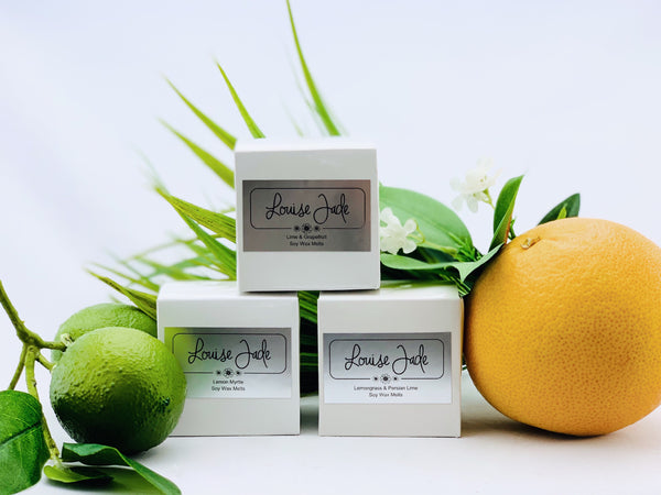'Fresh Citrus' Melt Box Collection
