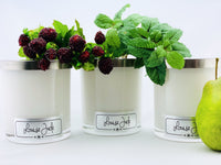 'Fruit Basket' Large Candle Collection