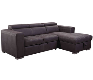 Amando 2 Piece Sectional w/ Sleeper