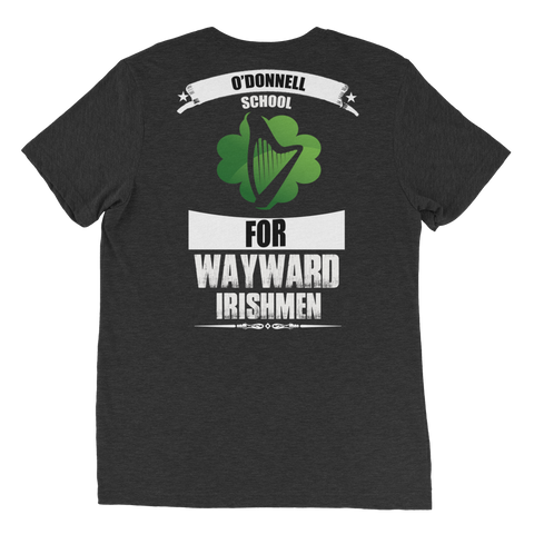 O'Donnell School for Wayward Irishmen Short sleeve t-shirt