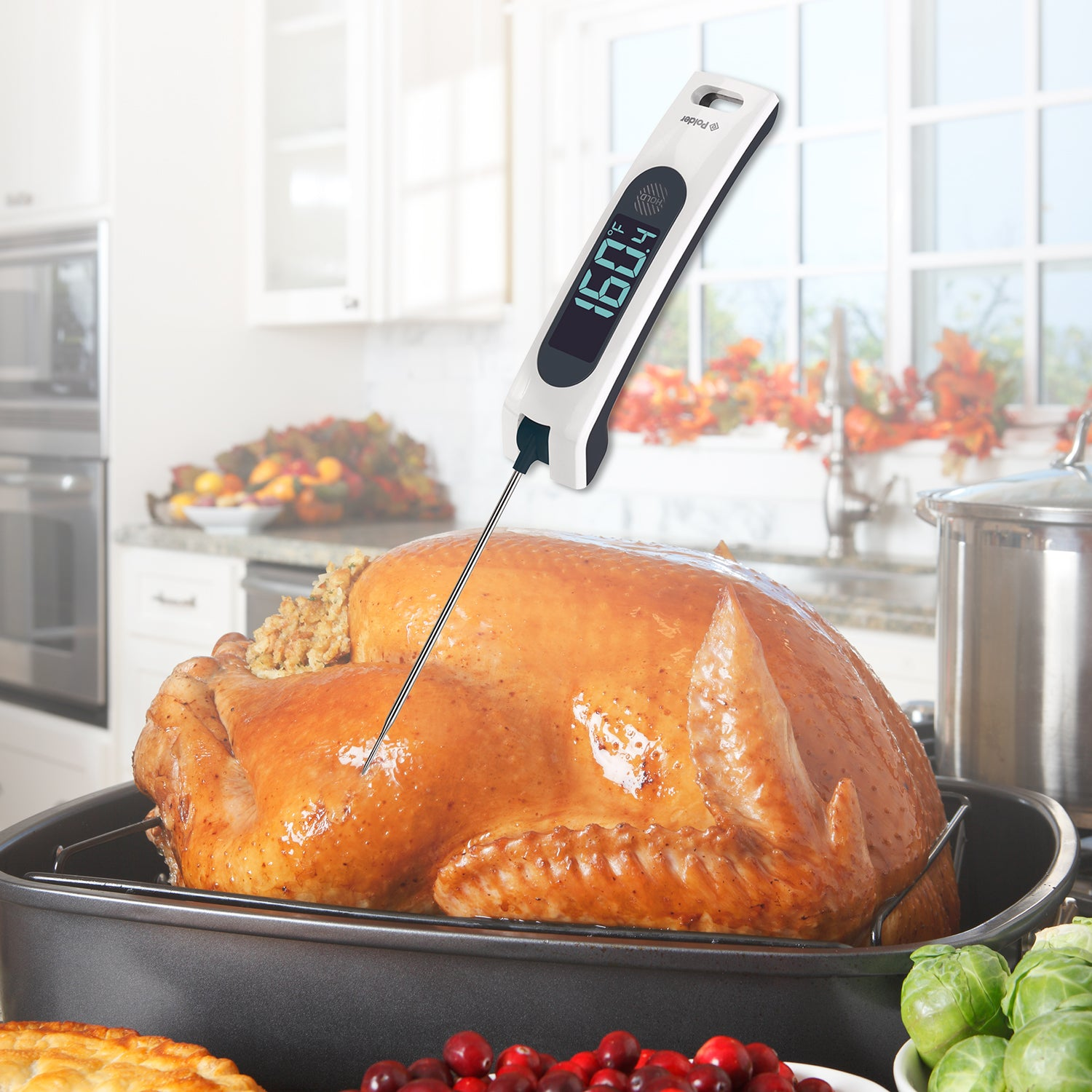Sous Chef Rapid Read Thermometer