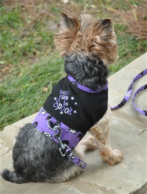 Too Cute To Spook Dog Harness Vest With Matching Leash Serendipity