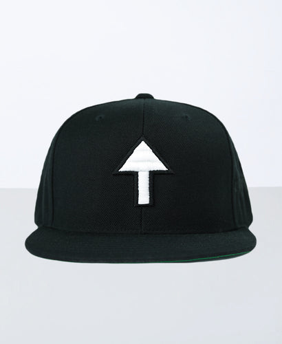 The Positive Change Snapback