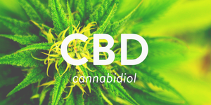 A Bit About Cannabidiol (CBD)