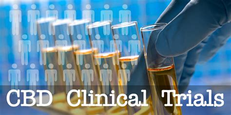 Clinical and Pre-Clinical Trials of CBD Show Significant Promise.
