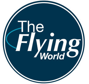 TheFlyingWorld