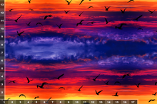 Load image into Gallery viewer, Sunsets and Seagulls