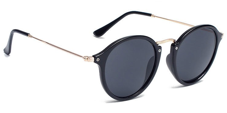 La Brea Roosevelt Classic black gold sunglasses with black lenses - side