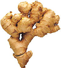 Ginger 1lb appx. - Indian Bazaar - Online Indian Grocery Store