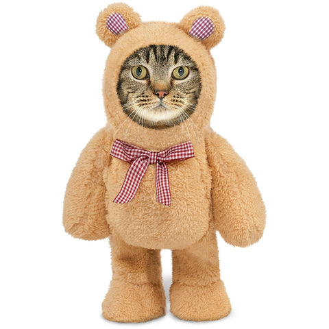 Teddy Bear Walking Cat Costume - Boujeecat