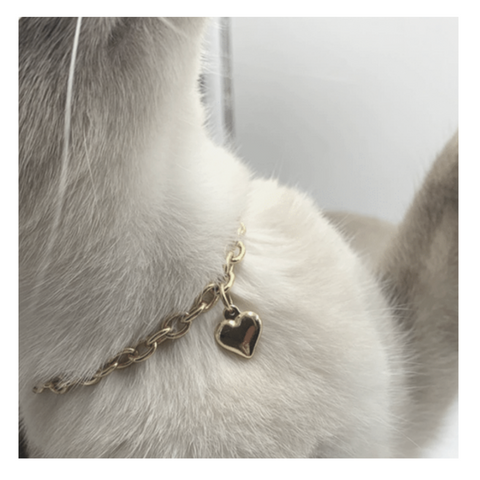 Gold Heart Necklace - Boujeecat