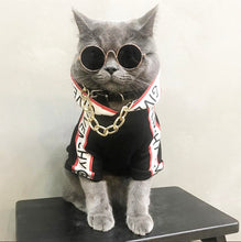 Load image into Gallery viewer, Fashion Cat Hoodie