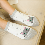 Kitty Love Socks - 5 Pack - Boujeecat