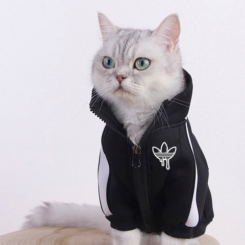 Cat Track Jacket - Boujeecat
