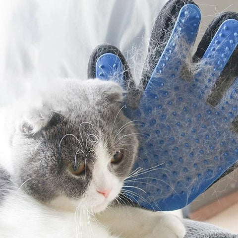 Hair Removal Shed Control Glove - Boujeecat