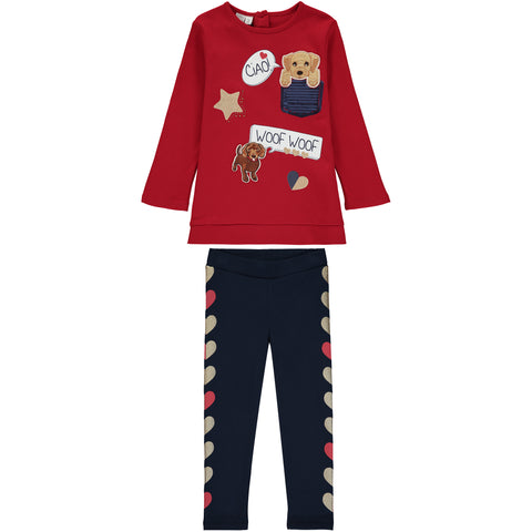 Girls Top and Leggings Outfit Set