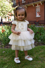 Gold Tulle Girl Dress