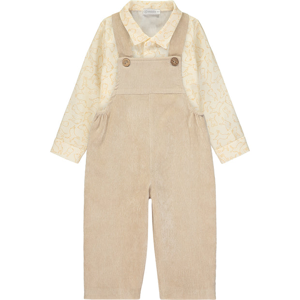 Baby Boy Shirt and Dungarees Outfit Set
