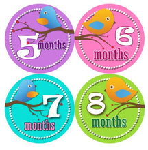 Load image into Gallery viewer, Monthly Onesie Sticker Set Of 12 - Girl Birdies Baby Month Onesie Stickers Baby Shower Gift Photo Shower Stickers, Baby Shower Gift By Onesiestickers