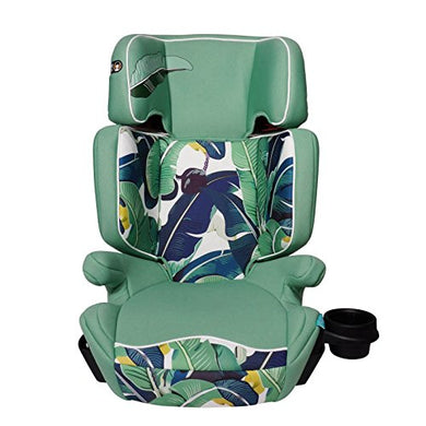 Aidia Explorer 2-In-1 Safety Booster Car Seat, Green/Blue