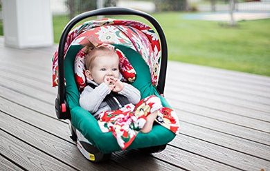 Carseat Canopy Whole Caboodle Jersey Stretch - Avery