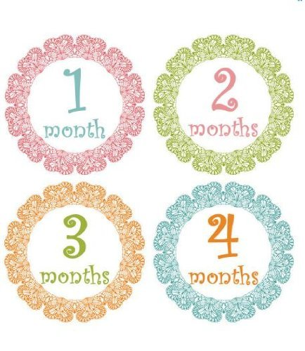 Monthly Stickers Baby Month Stickers Baby Girl Monthly Stickers Girl Pastel Laced Monthly Stickers Scalloped Curlz