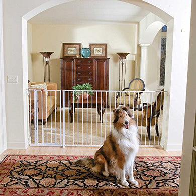 Carlson Maxi Extra Tall Walk-Thru Pet Gate In White
