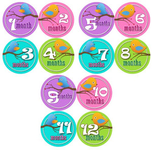 Monthly Onesie Sticker Set Of 12 - Girl Birdies Baby Month Onesie Stickers Baby Shower Gift Photo Shower Stickers, Baby Shower Gift By Onesiestickers